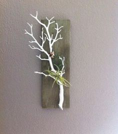 Items similar to White Coral Branch Air Plant Holder on weathered Barnwood on Etsy Whitewashed Stained Barn Wood, mit Coral Branch, Air Plant Holder und Wandbehang für den Flur Decoration Branches, Branch Decor, Driftwood Projects, Driftwood Art, Diy Projects, Art Diy, Diy Wall Art, Twig Art, Branch Art