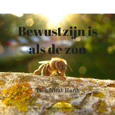Bewustzijn – Mindfulness voor elke dag