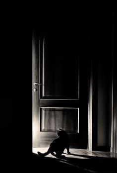 in the dark                                                                                                                                                                                 Más