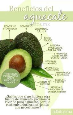Properties and Benefits of an Avocado