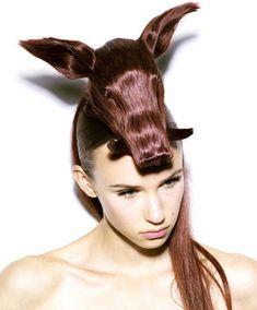Un cochon sur la tête !
