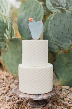 Cactus Cake Topper and fun Chevron Pattern | wedding cake by Růže Cake House > http://boards.styleunveiled.com/pin/f1e57fc231d053ef54780bd2c288b5cb