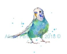 Watercolor Parakeet Print funny art parakeet by eastwitching Art Watercolor, Watercolor Animals, Art And Illustration, Painting & Drawing, Art Drawings, Fine Art Prints, Parakeets, Parrots, Indian Summer