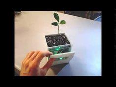 DIY Smart Plant pot
