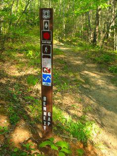 Mountain Biking the Pisgah National Forest, North Carolina