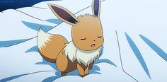 Discover & share this Cute Pokemon GIF with everyone you know. GIPHY is how you search, share, discover, and create GIFs. Pokemon Gif, Pokemon Eeveelutions, Eevee Evolutions, Pokemon Images, Pokemon Pictures, Pokemon Stuff, Gifs, Pokemon Original, Favim