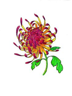 Overview: chrysanthemum tattoo designs by Halie Logan with many type style   Tattoos