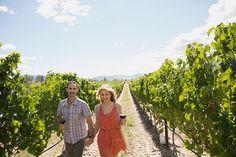enoturismo, visita a bodegas y viñedos