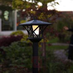 Lampe solaire LED solaire fleurs arbuste lampe solaire jardin éclairage dekoleuchte batterie!