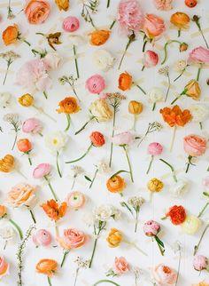 bloemen-aan-muur