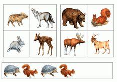 тематичексая неделя дикие животные Educational Games, Close Image, Moose Art, Arrow Keys, Animals, Blue Prints, Animales, Learning Games, Animaux