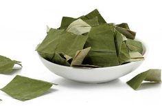 chinese tradition medicine herbal lotus leaf decrease to lose weight, slimming tea,burning fat,free shipping H11 SmsAliexpress #smsaliexpress