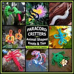 Paracord Critters ~ Full-color step-by-step instructions for twelve animal shaped knots and ties. Featuring pieces designed by J.D. Lenzen, a former naturalist and the originator of fusion knotting. Lenzen skillfully shows how to make a menagerie of paracord creatures that live underwater, on land, and in the sky—with each creation represented as a useful item (pin, key fob, necklace) or figurine.