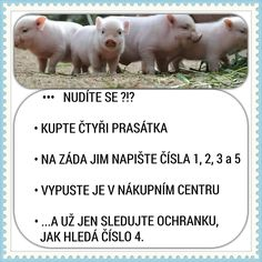Uz viem co budem robit nabuduce, ked sa budem nudit! Funny Pins, Funny Cute, Good Jokes, Funny Jokes, Jokes Quotes, Memes, Funny People, Haha, Comedy