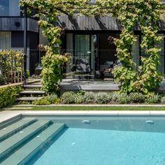 "Eugene Gilligan on Instagram: ""A soft transition from house to pool. #eugenegilligandesign #eghorticulture #gardendesign #pool #poolside #melbournegardendesign 📷…"" Climbers, Melbourne, Garden Design, Outdoor Decor, House, Instagram, Interior, Home, Indoor"