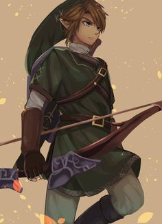 Link. Legend of Zelda