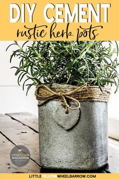 Cute little concrete pots for all your herbs or small plants. A very easy DIY tutorial that doesn't break the bank. Raid your recycling bin because the molds for these are free. #cement #crafts #smallplanters #DIY #gardenideas