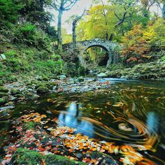 Autumn at Tollymore Forest Park   Ireland   Foley's Bridge has been standing strong since 1787.