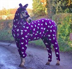 Have you ever seen a horse wearing purple PJ's? You have now! More animal love here>> http://furlesscosmetics.com.au/furless-cosmetics-blog/itemlist/category/8-animals