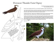 Ospreys have been a theme in my life lately. They first appeared on my radar a couple of weeks ago when I photographed a pair of nesting osprey. Then, on three different occasions, I've spied… Felt Crafts Patterns, Felt Crafts Diy, Bird Patterns, Christmas Sewing, Felt Christmas, Bird Ornaments, Ornament Crafts, Bird Quilt, Felt Birds