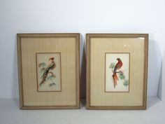 Bird of Paradise and Parrot Pictures Set of 2 Vintage Feather Art Framed Glass #Asian