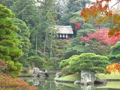 Katsura Rikyū The Katsura Imperial Villa Kyoto