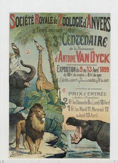 Vintage Illustratie-Affiche-Reclame ~ZOO Antwerpen~