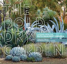 The Bold Dry Garden: Lessons from the Ruth Bancroft Garde... https://www.amazon.com/dp/1604696702/ref=cm_sw_r_pi_dp_x_j4iEybWAHYEPB