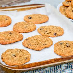 Not-your-mama's Oatmeal Raisin Cookies - Snixy Kitchen