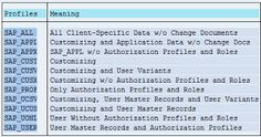 Essential Basis for SAP (ABAP, BW, Functional) Consultants Part-I