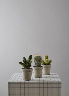 Concrete Mini Cactus Pot by geofleur on Etsy Cactus Pot, Cactus Flower, Cacti, Beton Diy, Water Plants, Concrete, Planter Pots, Etsy, Geo