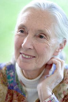 Dame Jane Morris Goodall, born Valerie Jane Morris-Goodall on 3 April 1934 is an English primatologist, ethologist, anthropologist, and UN Messenger of Peace.