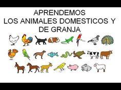Aprendemos Los animales domésticos
