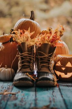 Uploaded by María José. Find images and videos about autumn, Halloween and vida on We Heart It - the app to get lost in what you love. Icon Background, Fall Background, Fall Pictures, Fall Photos, Autumn Cozy, Autumn Fall, Autumn Scenery, Fall Wallpaper, Halloween Wallpaper