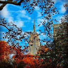 Eye of the needle #esb #konyh #nyc #autumn #fall