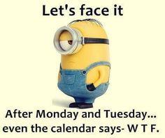 Monday, Tuesday, WTF...
