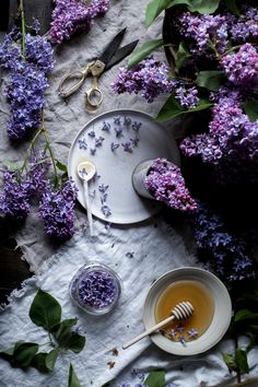 lilac infused honey — L | E