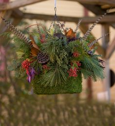 """Winters Wow """"Feathers & Berries"""" Assembled Hanging Basket"""