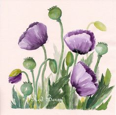 Flower watercolor Deep purple poppies Floral Art by TheRedBerry, $51.00