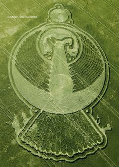 alien visit proof? crop circles phoenix