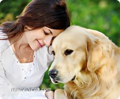 Facial recognition along with personal energy fields or auras are factors that dogs do recognize. Do they recognize their owners in pictures? http://www.naturalnews.com/043336_dogs_pet_owners_animal_cognition.html