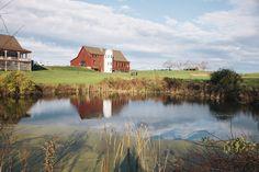 Barn at Gibbet Hill; Massachusetts wedding venue, Farm to Fork; Groton, MA  #newenglandwedding #farmwedding #barnwedding Photography by Kate Preftakes