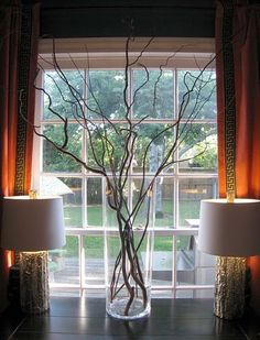 decorate with twigs for wedding | ... Using Fresh and Dry Curly Willow Branches | Home Design Gallery