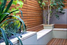 Gardening Concept Inspirtation for Small Patio