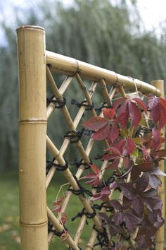 DIY WEAVE A BAMBOO FENCE - ,nicer than trellis