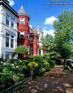 P Street Victorian Row Houses in Summer, Georgetown - http://andrewprokos.com/photos/washington-dc/