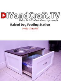 DIY Raised Dog Feeding Station l