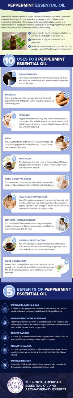 Peppermint essential oil uses and benefits, what does peppermint essential oil do?