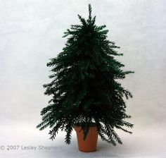 More than 30  Miniature Scale Plants and Flowers to Make From Paper: Make Realistic Miniature Evergreen Trees