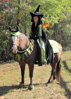 halloween costumes for horse and rider - Google Search | funny stuff | Pinterest | Halloween costumes Horse and Costumes & halloween costumes for horse and rider - Google Search | funny stuff ...